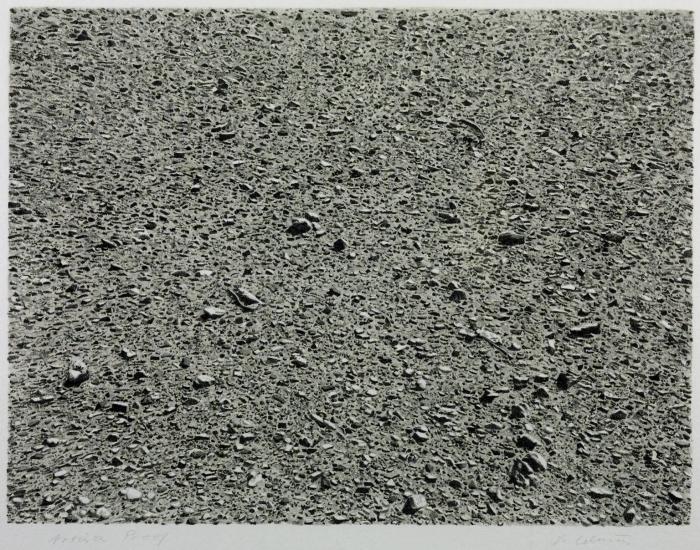 Desert 1975 by Vija Celmins born 1938