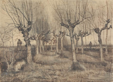 Pollard Birches Vincent van Gogh, 1884