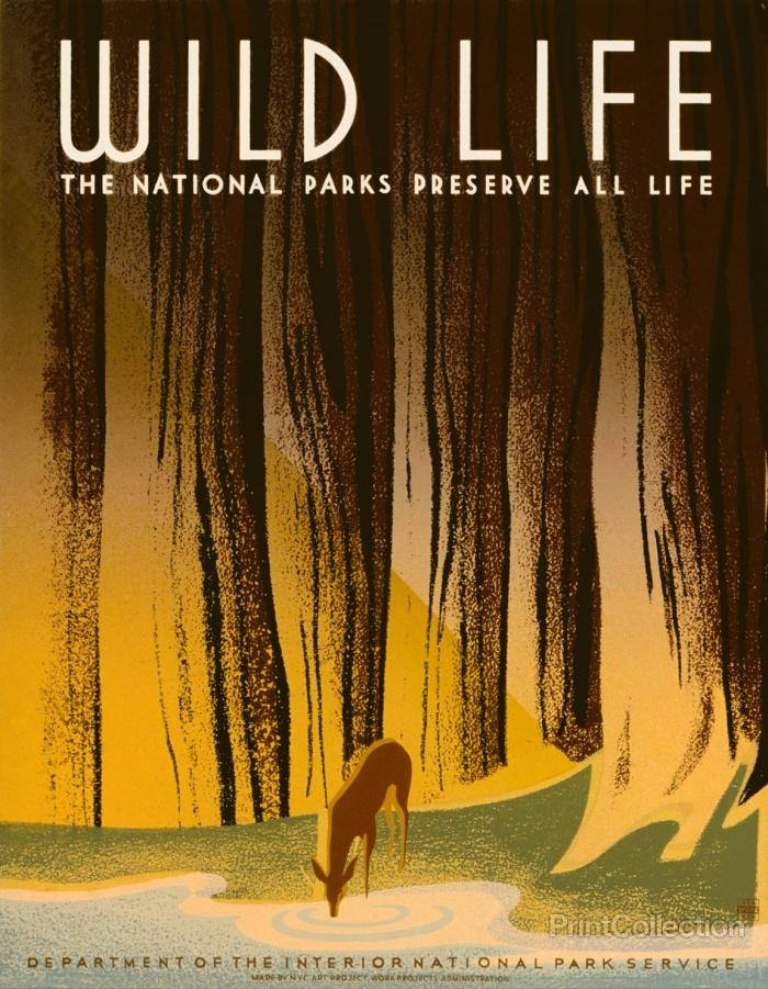 wild-life-wpa-poster_c53a50ab-dac7-47bf-a652-97f40422481e copy