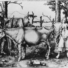 Lucas van Leyden; The Milkmaid; 1510; engraving; 115 x 155 mm