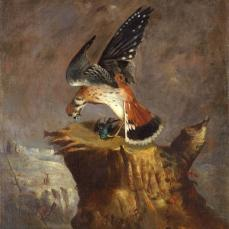 1Robert S. Duncanson, Vulture and Its Prey, oil on canvas, 27 1/8 x 22 1/4 in.