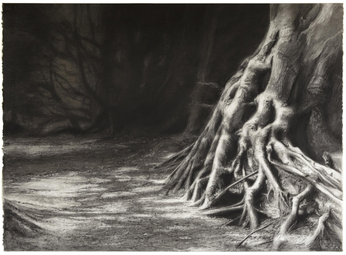 Celia de Serra The Gateskeeper Charcoal, 2014