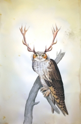 "Justin Gibbens Bird of Paradise XVII- Great Horned Owl Watercolor, graphite, gouache, ink, oolong tea on paper 2008 40"" x 26"""
