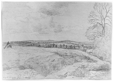 Lionel Bicknell Constable, Landscape, graphite, 17.5 x25 cm., 19th C.