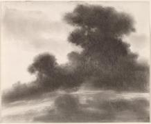 Richard Mayhew, charcoal on wove paper, 35.56 x 43.02 cm (14 x 16 15/16 in.), 2002.