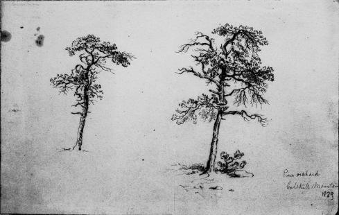 John Frederick Kensett. Drawing. 1839.