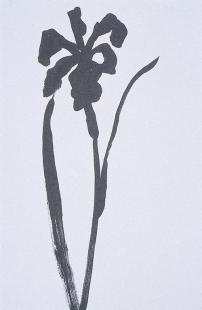 Kelly, Ellsworth, ink on paper, 76.2 x 57.2 cm, 1989.
