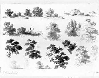 William Groombridge, Tree Sketches, wash on paper, 10.375 x 14.75 in., 18th C. x