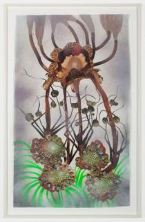 Botanical Arrangement Limber, 2011 Mixed media collage and paint on mylar 51 x 30 1 2 inches (129.5 x 77.5 cm)